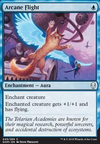Arcane Flight