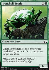 Ironshell Beetle