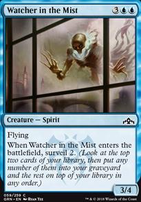 Watcher in the Mist